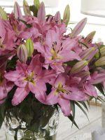 GAV Bella Bouquet